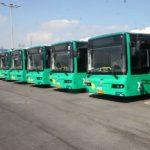 שמונה אוטובוסים של גולדן דרגון נרכשו במכרז זה