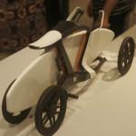 לביא, אופניים עם מנשא לגלשן, תכננה בר לביא